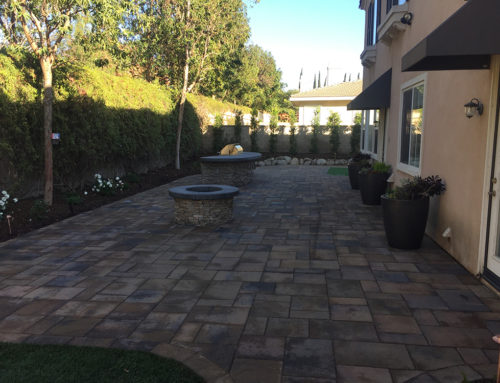Backyard – Claremont, CA