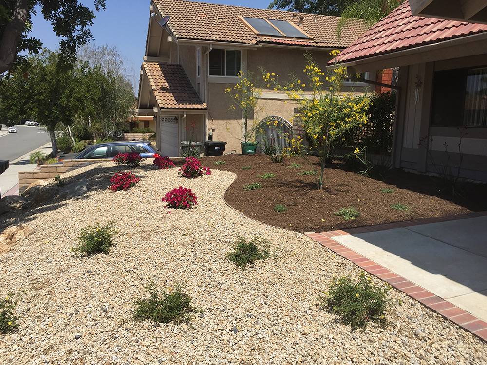 Drought Tolerant Plantings - San Dimas, CA