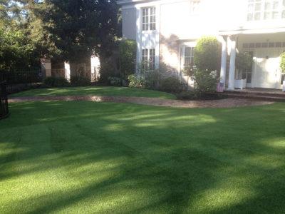 Artificial Lawns - Pasadena, CA